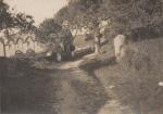Rickham Farm showing cottages.