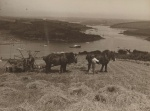 View from Portlemouth, 1939